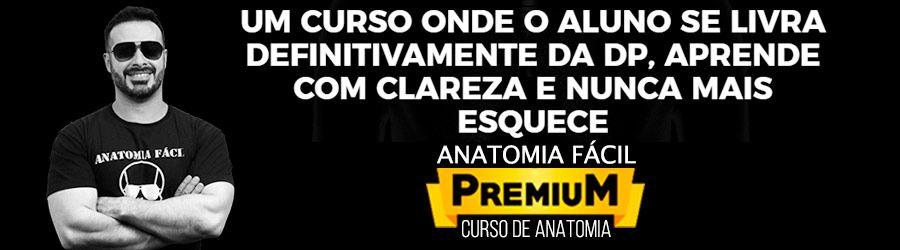 Anatomia Fácil Premium
